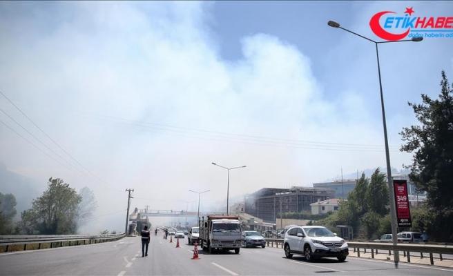 Bursa'da çamlık alanda orman yangını