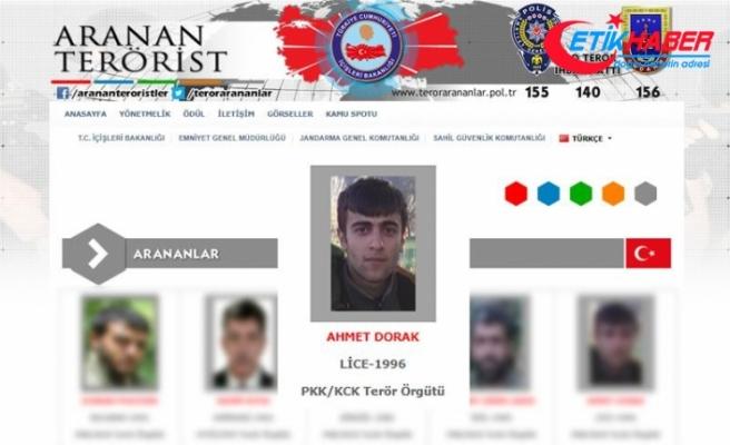 Etkisiz hale getirilen gri listedeki terörist 5 şehidin faili çıktı