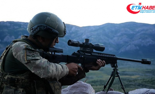 Tunceli ve Kars'ta 7 terörist etkisiz hale getirildi