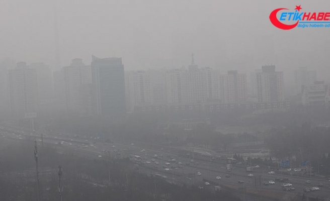 Hava kirliliği zekayı geriletiyor