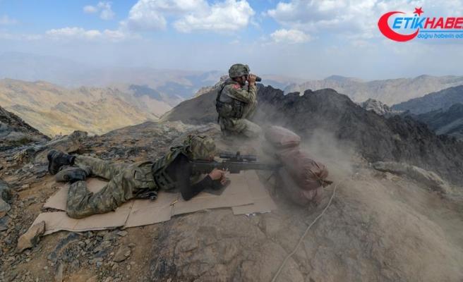 Şırnak'ta 5 PKK'lı terörist etkisiz hale getirildi