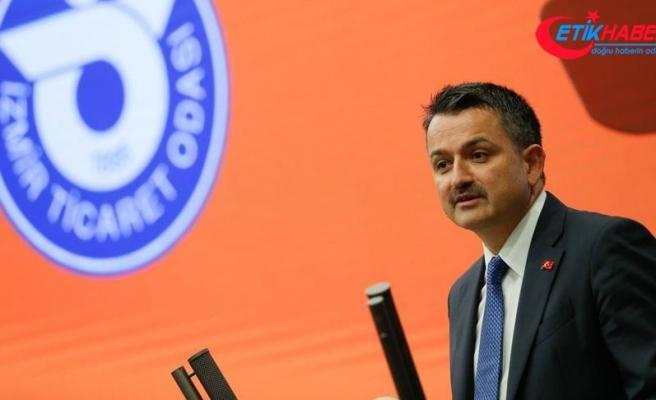 Tarım ve Orman Bakanı Pakdemirli: Türkiye balık ürünleri ihracatında 1 milyar doları geçti