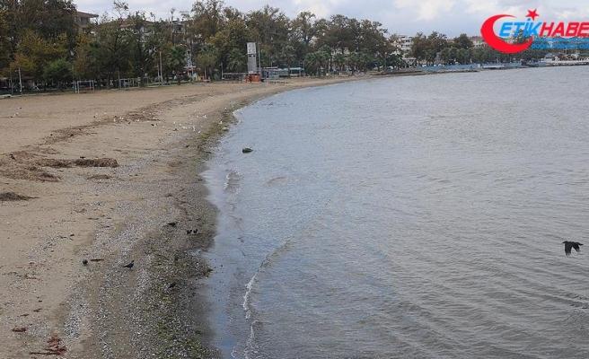 Yalova'da deniz suyu 25 metre çekildi