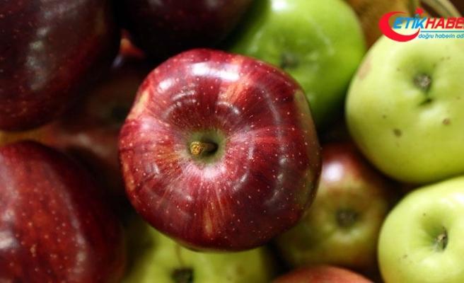 'Bu elmaları Türkiye'de bulmak zor'