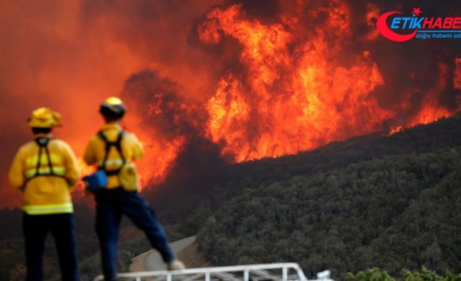 California'daki yangınlarda ölü sayısı 74'e yükseldi