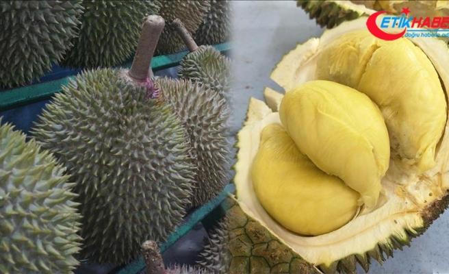 Endonezya'da duryan meyvesinin kokusu nedeniyle uçak rötar yaptı