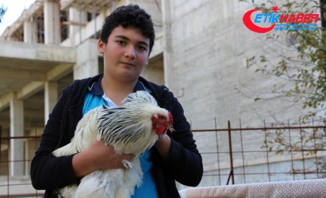 Tavuklarından ayrılamayınca okula kümes yapıldı