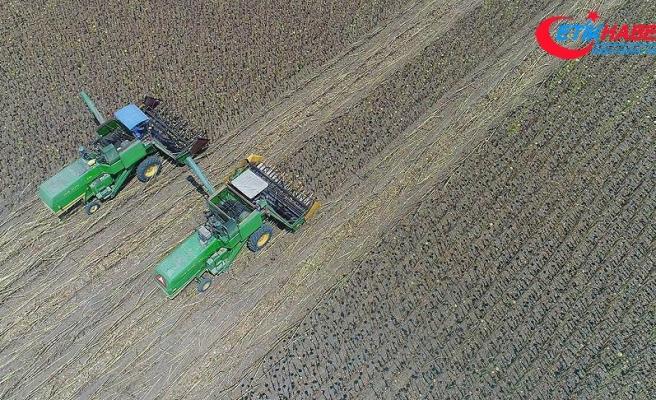 Türk Eximbank'tan tarımsal ürün ihracatçılarına ilave kredi desteği