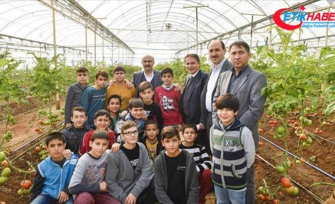 Barınma merkezindeki Suriyeliler sebze yetiştiriyor