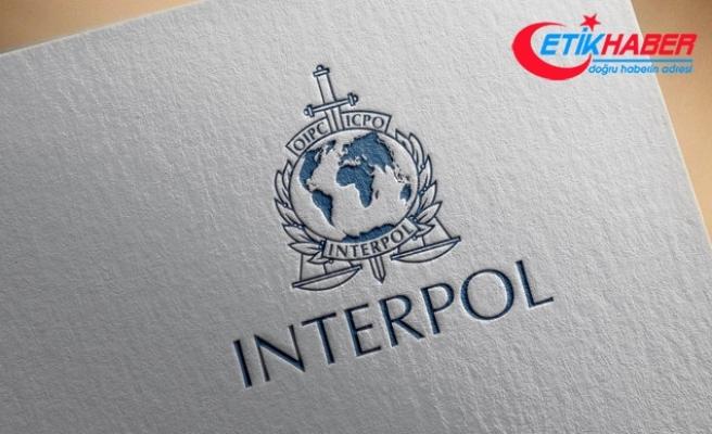 Interpol'den Türkiye'ye büyük övgü
