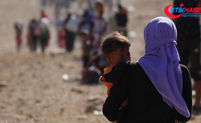 Sincarlılar PKK varlığı nedeniyle göçmen kamplarına dönüyor