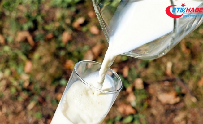 Süt Prim Desteği artırıldı