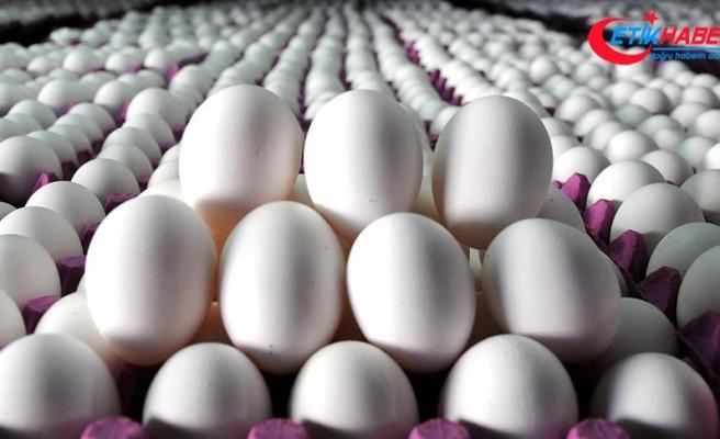 Devlet başkanı yardımcısının yumurtalarını çaldılar: 4 gözaltı
