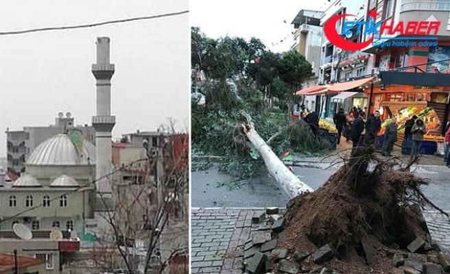 Dün Antalya bugün İzmir! Ağaçlar devrildi, çatılar uçtu, vapur seferleri iptal edildi