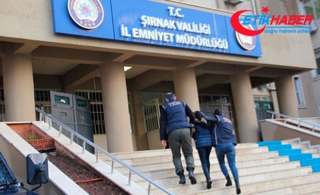 HDP'li başkan adayı ve 21 kişiye PKK/KCK gözaltısı