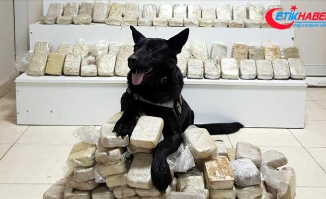Kahramanmaraş'ta 103 kilo 600 gram eroin ele geçirildi