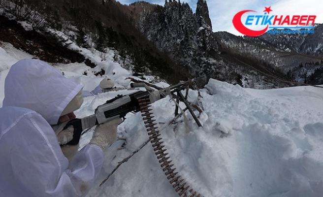 Karadeniz'de, PKK'nın kış üslenmesine eş zamanlı operasyon
