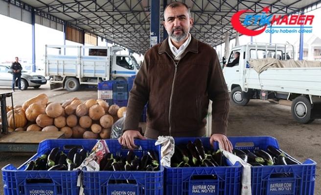 Marketlerin 'patlıcan' kararı fiyatı düşürdü
