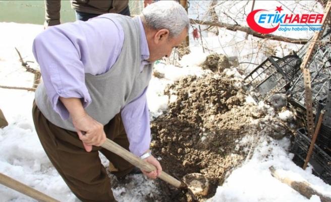 Yazın bidonlarla toprağa gömülen süt ürünleri çıkarılmaya başlandı