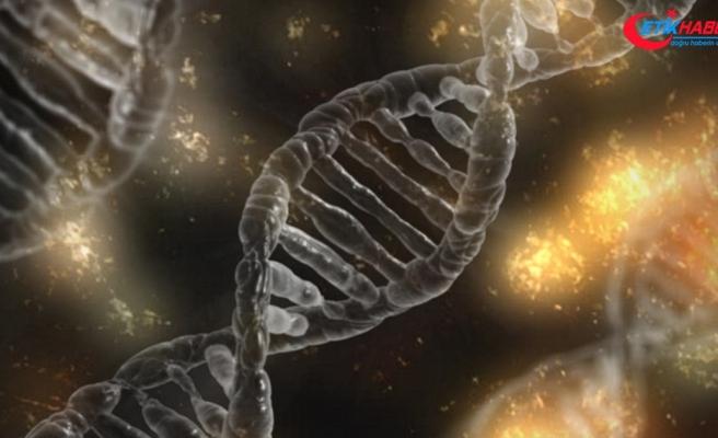 'Genetik hastalıkları düzeltebilmek artık hayal olmanın ötesinde'