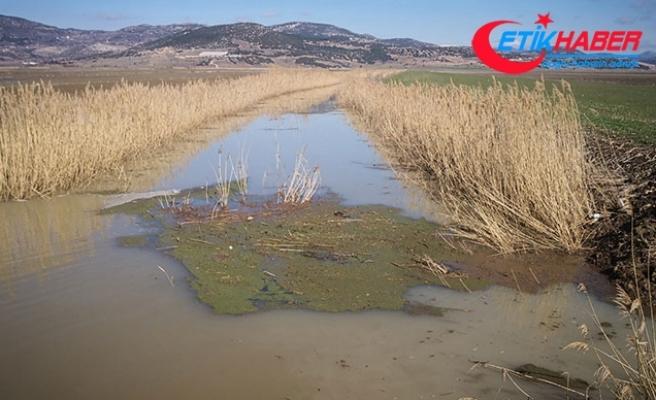 Kestel Ovası'nda 30 bin dekar tarım arazisi su altında kaldı