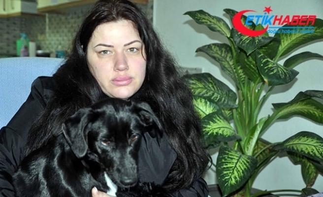 Türk eşinden şiddet gördü, hayvan barınağına sığındı