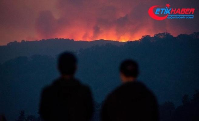 Yeni Zelanda'da orman yangını nedeniyle binlerce kişiyi tahliye edildi