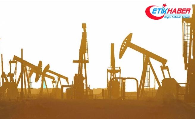 Petrolün dalgalı seyri ekonomileri tehdit ediyor