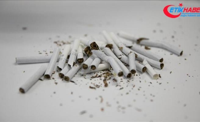 'İnternette 'beğeni sevdası' sigarayla mücadeleye zarar veriyor'