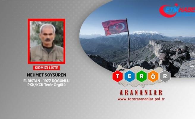 Kırmızı listedeki PKK'lı Soysüren etkisiz hale getirildi
