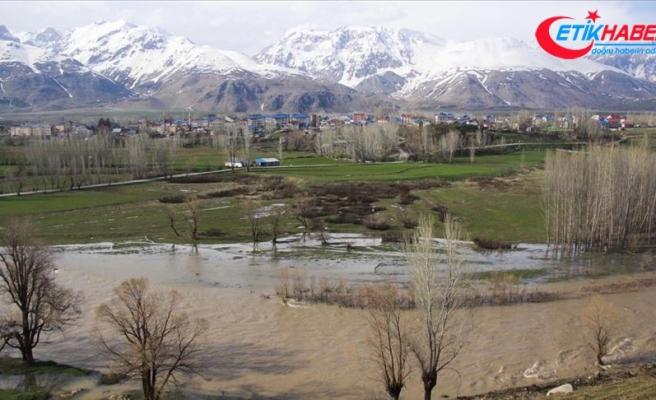 Taşan Munzur Çayı tarım arazilerini su altında bıraktı