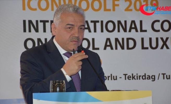 'Türkiye ekonomisinin lokomotifi tekstildir'