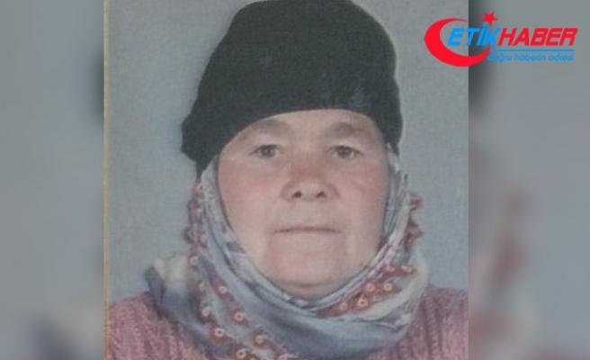 42 koyunu için öldürülen kadının katil zanlısı, keşif yapmış