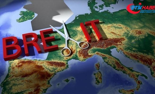 'AB, Brexit yanlılarının yalanlarına müdahale etmeliydi'