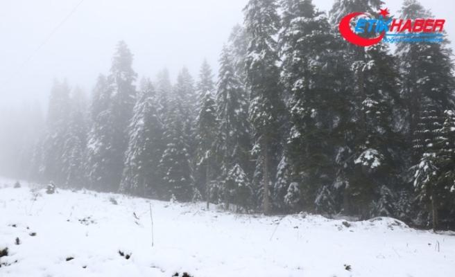 Doğu Karadeniz'in iç kesimlerinde kar bekleniyor