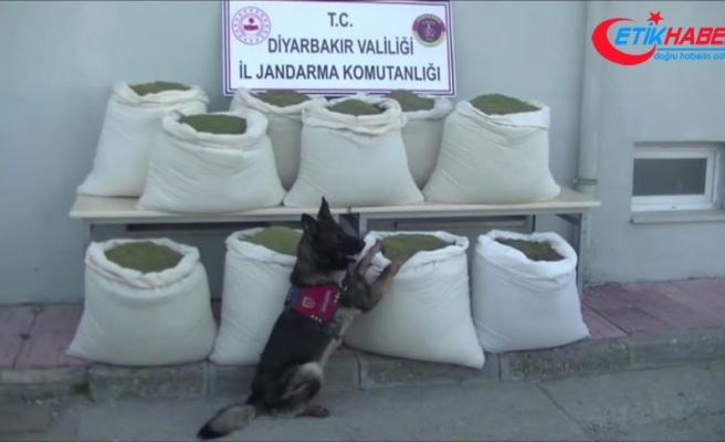 Diyarbakır'da 346 kilogram esrar ele geçirildi