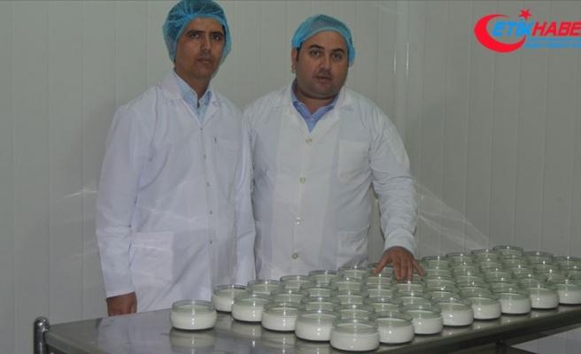 Et ve süt ürünlerini borla zenginleştirip, raf ömrünü uzattılar