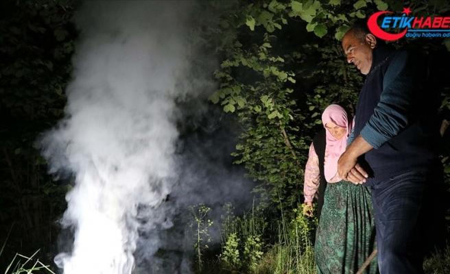 Fındığa 'duman'lı koruma