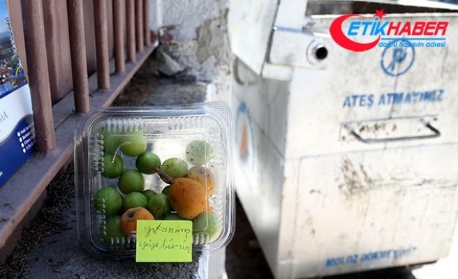 Meyveleri 'yıkanmış yiyebilirsiniz' notuyla okul duvarına bıraktı