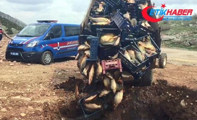 Sağlıksız koşullarda taşınan 1 ton 200 kilo balık imha edildi