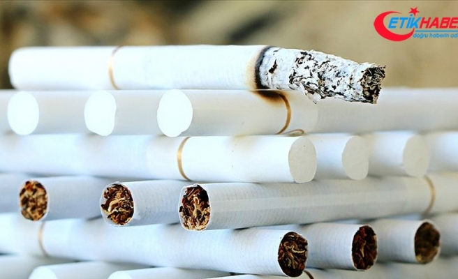 'Sigara her yıl 7 milyondan fazla kişinin ölüm nedeni'