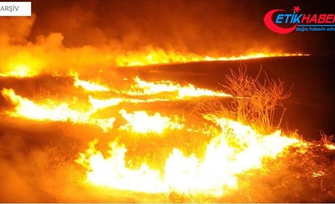 Terör örgütü YPG/PKK Tel Rıfat'ta sivillerin arazilerini yaktı
