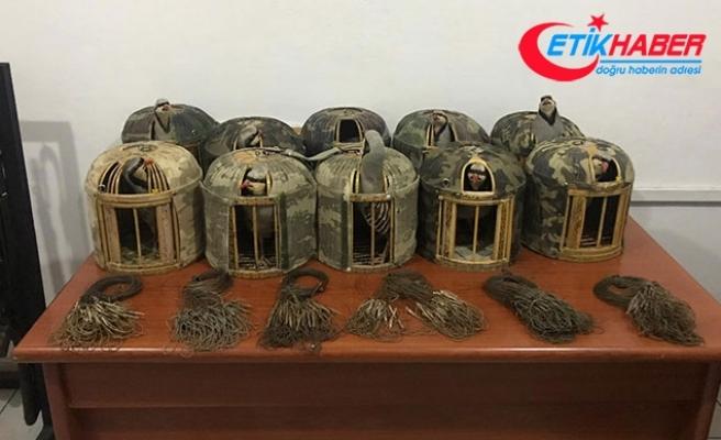 Van'da kınalı keklik avcılarına 16 bin lira ceza