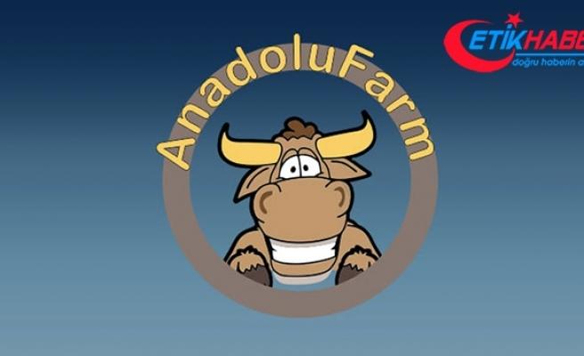 Anadolu Farm örgüt üyeleri vatandaşı 'helal kazanç' ile kandırmışlar