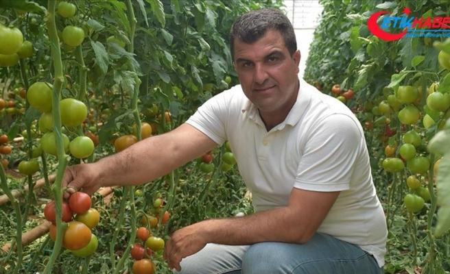 Kurduğu serayla mevsimlik işçilere umut oldu