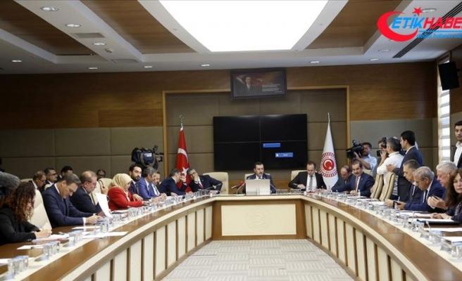 Meclis Araştırma Komisyonu, down sendromlu Dilara'yı dinledi