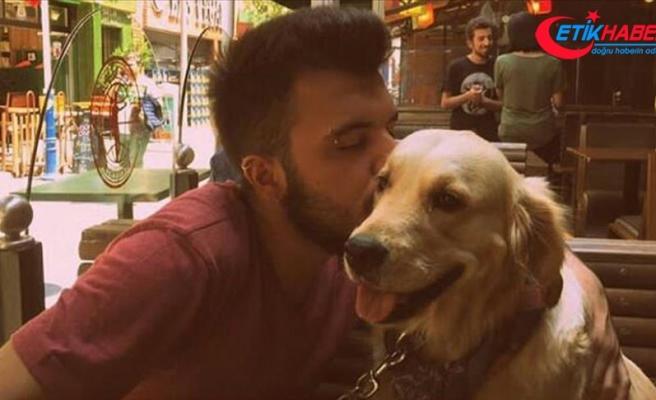 Bilirkişi 'paylaşılamayan köpek' hakkındaki raporunu verdi
