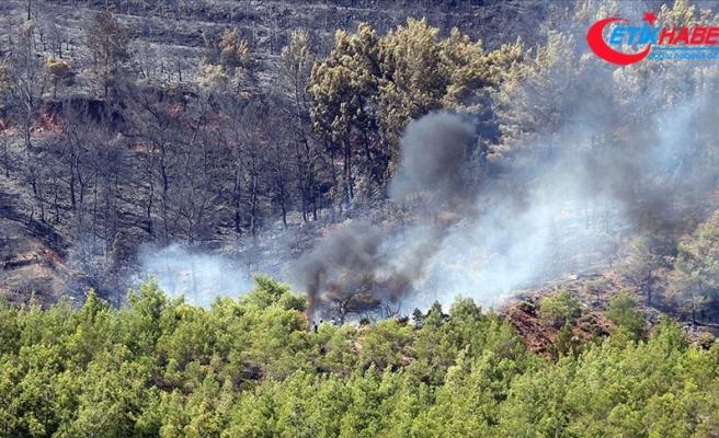 Fethiye'de çıkan yangına hava araçlarıyla müdahale ediliyor