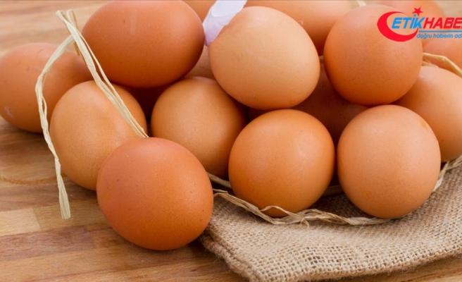 Yumurtada ihracat sıkıntısı