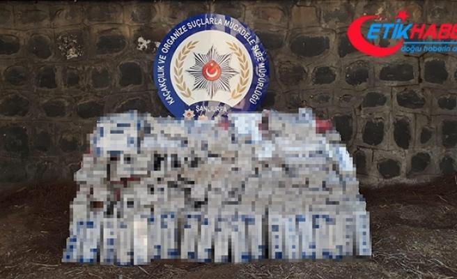 Şanlıurfa'da 11 bin 480 paket kaçak sigara ele geçirildi